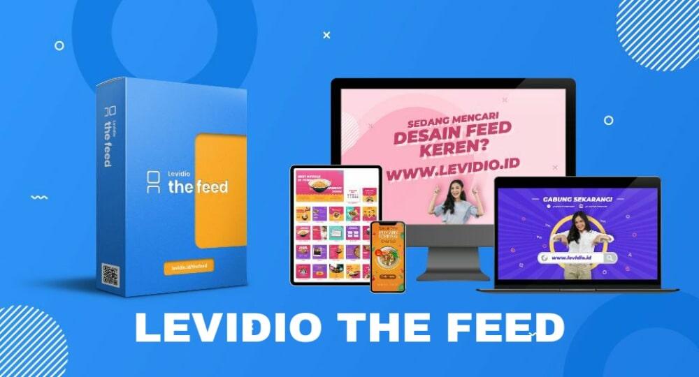 Levidio-the-feed-kangadi